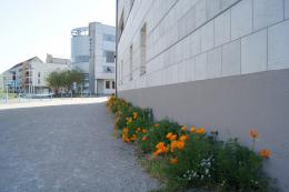 Rue d'Ottweiler
