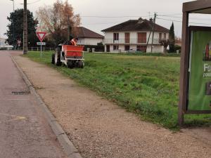 Plantation rue des Alouettes